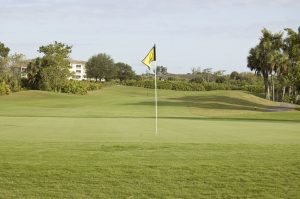 Best Naples Golf Courses - Top 5 Golf Courses in Naples, Florida