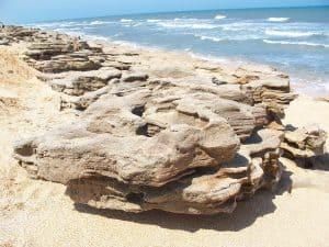 coquina sands beach
