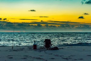 Best Fishing (Without a Boat) in Naples Florida